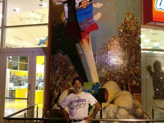 Kulbir Singh at Downtown Disney, Anaheim